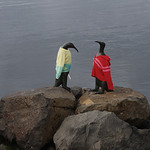 penquin statues in harbour with sweaters